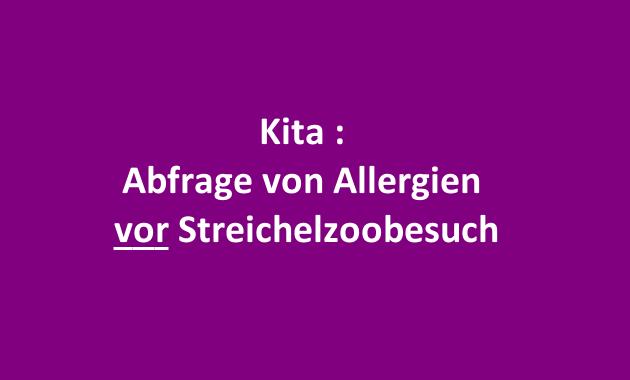 Kita Kindergarten Tiere Allergie