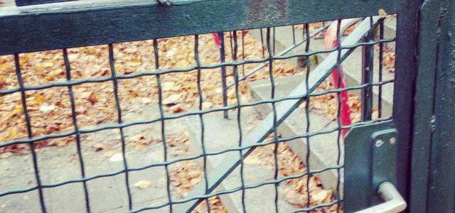 Hinweise der Unfallkassen Nr. 142: Sicherheit auf dem Kita-Gelände